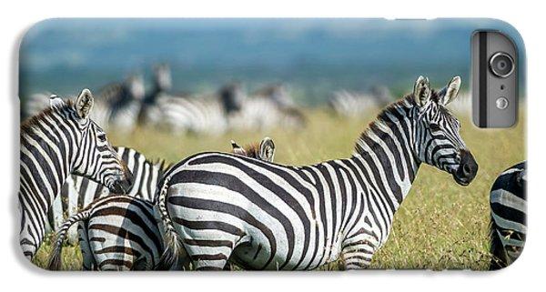 Zebra iPhone 6s Plus Case - Africa, Tanzania, Zebras by Lee Klopfer