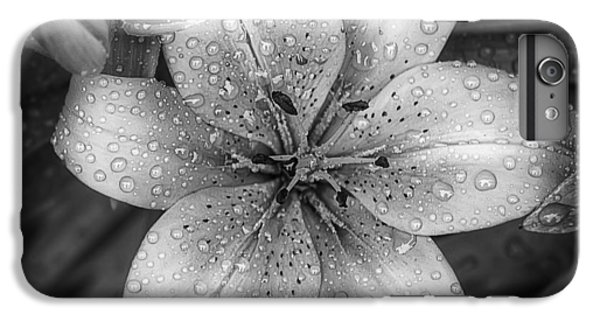 Lily iPhone 6s Plus Case - After The Rain by Scott Norris