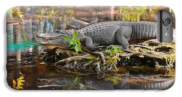 Alligator Mississippiensis IPhone 6s Plus Case by Christine Till