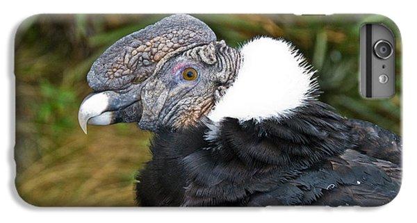 Andean Condor IPhone 6s Plus Case by William H. Mullins