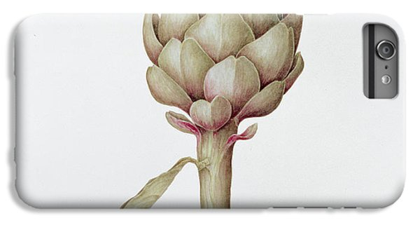 Artichoke IPhone 6s Plus Case by Diana Everett