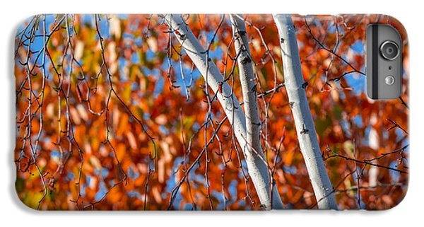 IPhone 6s Plus Case featuring the photograph Aspen by Sebastian Musial