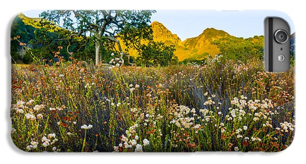 Santa Monica iPhone 6s Plus Case - August Sunrise In Malibu Creek State Park by Joe Doherty