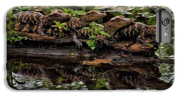 Baby Alligators Reflection IPhone 6s Plus Case by Dan Sproul