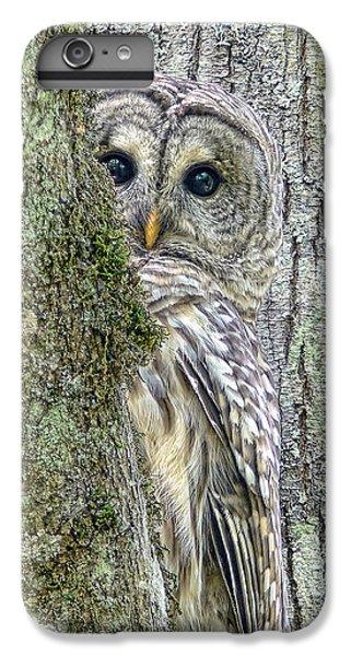Bar iPhone 6s Plus Case - Barred Owl Peek A Boo by Jennie Marie Schell