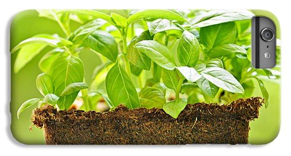 Garden iPhone 6s Plus Case - Basil by Elena Elisseeva