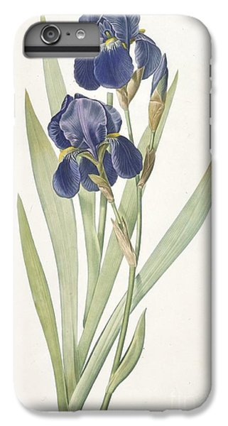 Bearded Iris IPhone 6s Plus Case by Pierre Joseph Redoute