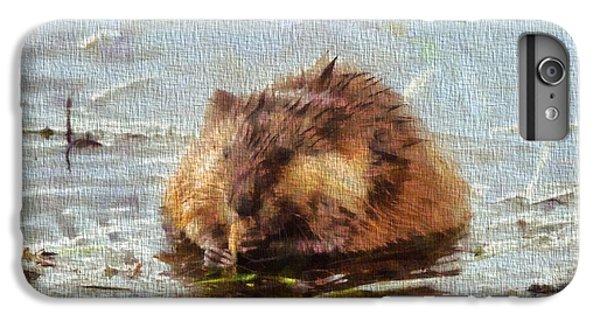 Beaver Portrait On Canvas IPhone 6s Plus Case