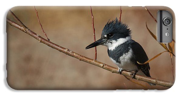 Kingfisher iPhone 6s Plus Case - Belted Kingfisher by Ernie Echols