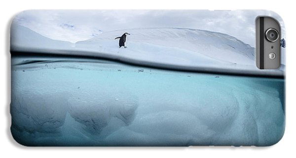 Penguin iPhone 6s Plus Case - Between Two Worlds - Facing Change by Justin Hofman