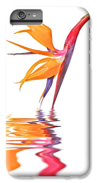 Crane iPhone 6s Plus Case - Bird Of Paradise Reflections by Delphimages Photo Creations