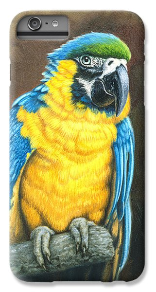 Macaw iPhone 6s Plus Case - Blue And Gold Macaw by Paul Krapf