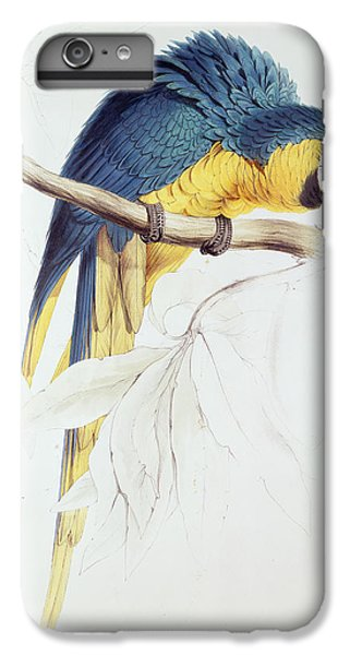 Macaw iPhone 6s Plus Case - Blue And Yellow Macaw by Edward Lear