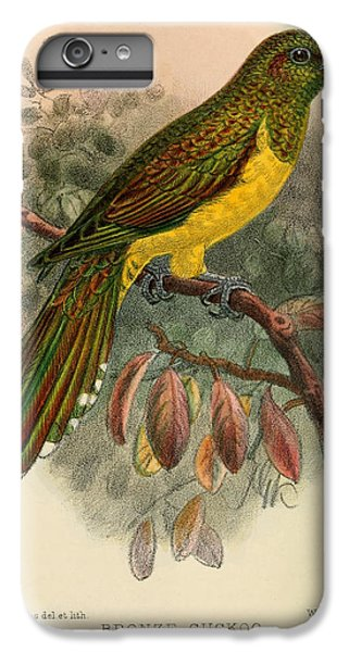 Cuckoo iPhone 6s Plus Case - Bronze Cuckoo by Dreyer Wildlife Print Collections