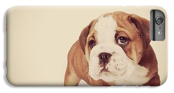 iPhone 6s Plus Case - Bulldog Pup by Ritchie Garrod