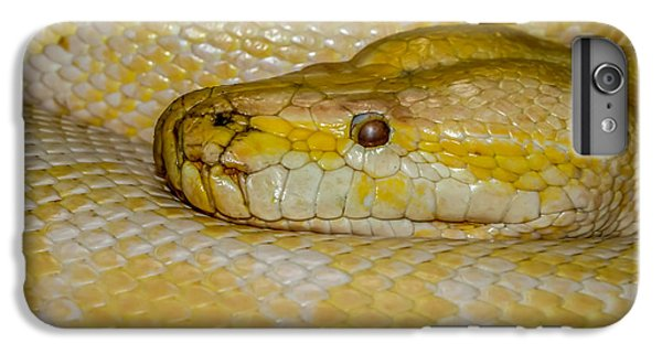 Burmese Python IPhone 6s Plus Case by Ernie Echols