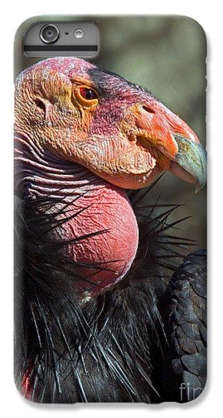 California Condor IPhone 6s Plus Case by Anthony Mercieca