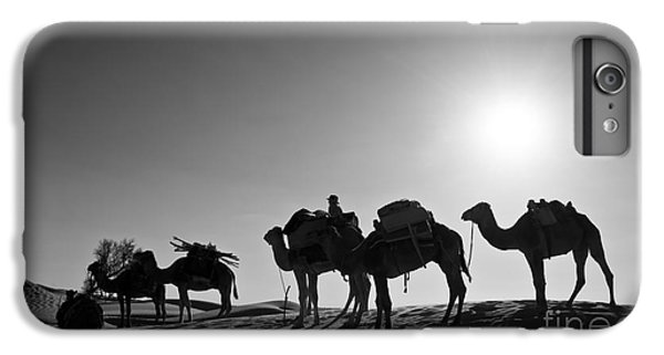 Camel iPhone 6s Plus Case - Camels by Delphimages Photo Creations