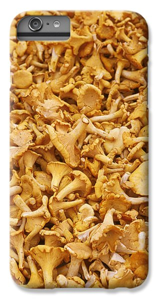 Chanterelle Mushroom IPhone 6s Plus Case by Anonymous