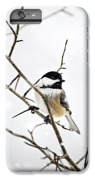 Charming Winter Chickadee IPhone 6s Plus Case