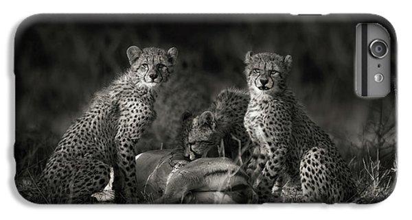 Cheetah Cubs IPhone 6s Plus Case