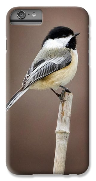 Chickadee IPhone 6s Plus Case