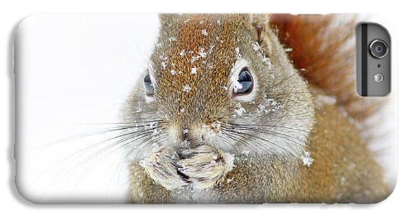 Squirrel iPhone 6s Plus Case - Christmas Squirrel by Mircea Costina