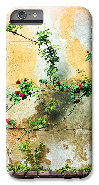 IPhone 6s Plus Case featuring the photograph Climbing Rose Plant by Silvia Ganora