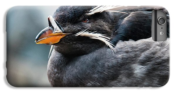 Auklets iPhone 6s Plus Case - Close-up Of Rhinoceros Auklet by Turner Forte