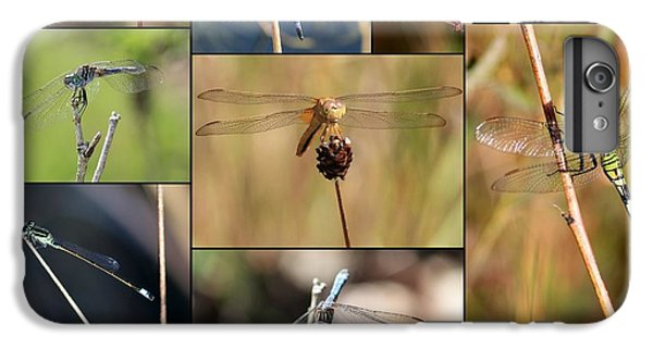 Collage Marsh Life IPhone 6s Plus Case