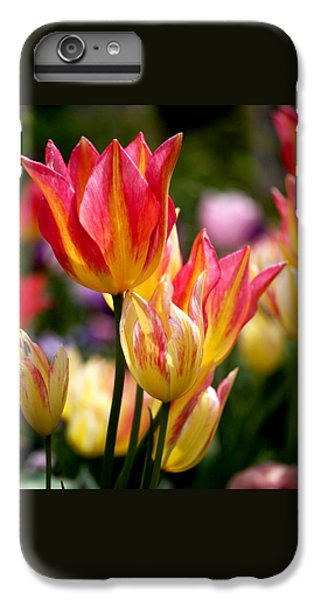 Colorful Tulips IPhone 6s Plus Case by Rona Black