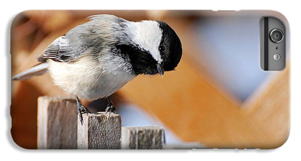 Curious Chickadee IPhone 6s Plus Case