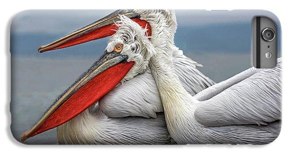 Pelican iPhone 6s Plus Case - Dalmatian Pelicans by Xavier Ortega