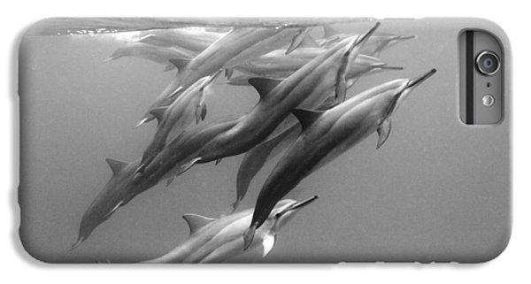 Dolphin Pod IPhone 6s Plus Case