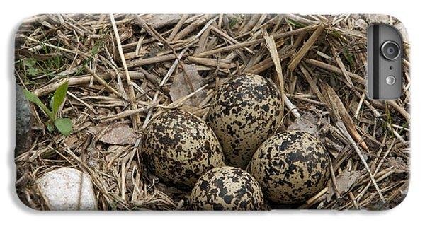 Killdeer iPhone 6s Plus Case - Eggs In Killdeer Nest by Linda Freshwaters Arndt