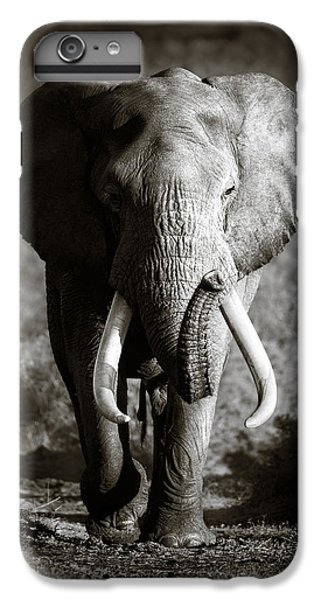 Elephant Bull IPhone 6s Plus Case by Johan Swanepoel