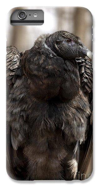Endangered Andean Condor IPhone 6s Plus Case