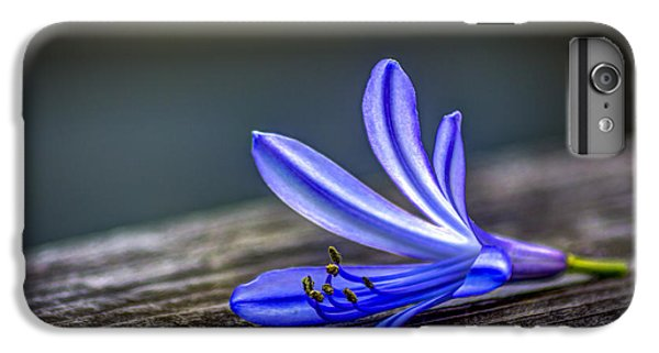 Lily iPhone 6s Plus Case - Fallen Beauty by Marvin Spates