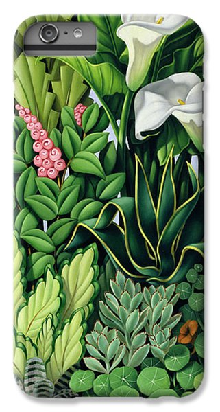 Garden iPhone 6s Plus Case - Foliage by Catherine Abel