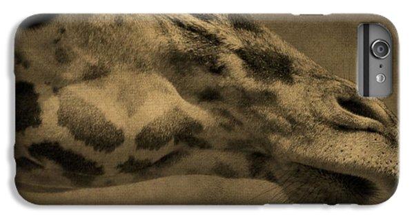 Giraffe Portait IPhone 6s Plus Case by Dan Sproul