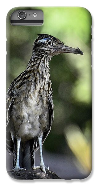 Greater Roadrunner  IPhone 6s Plus Case by Saija  Lehtonen