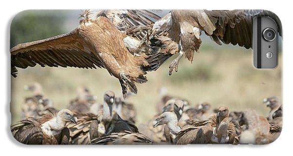 Griffon Vultures IPhone 6s Plus Case by Nicolas Reusens