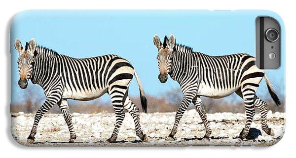Zebra iPhone 6s Plus Case - Hartmann's Mountain Zebra by Tony Camacho