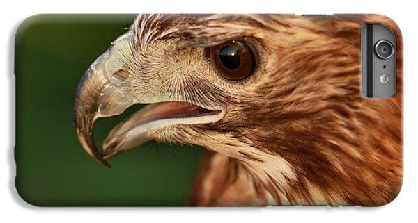 Hawk Eye IPhone 6s Plus Case by Dan Sproul