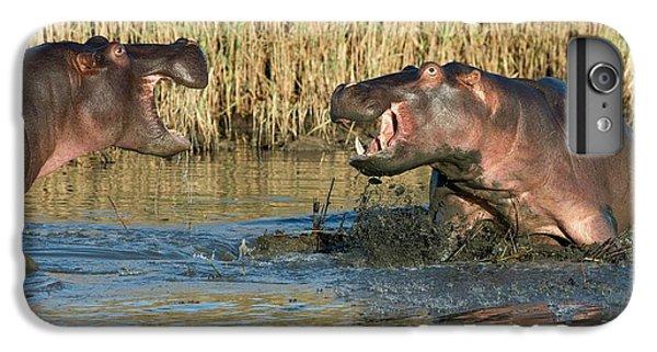 Hippopotamus Confrontation IPhone 6s Plus Case by Tony Camacho