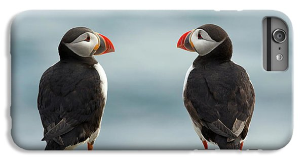 Puffin iPhone 6s Plus Case - I Love You - I Love You Too by Milan Zygmunt