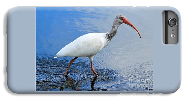 Ibis Visitor IPhone 6s Plus Case by Carol Groenen