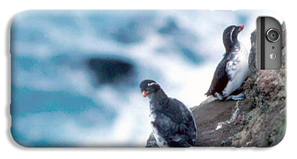 Auklets iPhone 6s Plus Case - I'm Not Talking To You Either by F Hughes