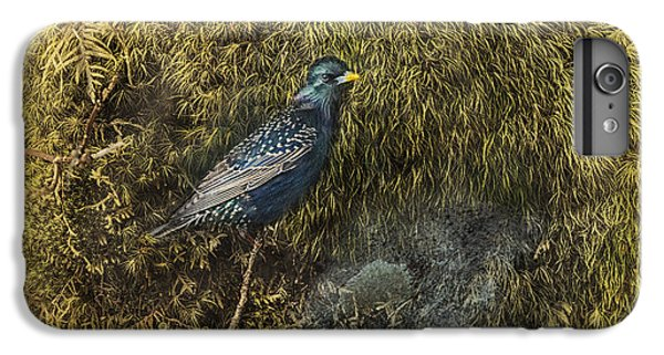 Starlings iPhone 6s Plus Case - In Sanctuary by Susan Capuano
