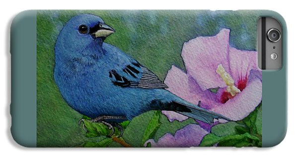 Indigo Bunting No 1 IPhone 6s Plus Case by Ken Everett